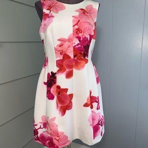 Calvin Klein Orchid Print Dress Flares bottom 12